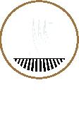 Tarasy Wrocław Logo